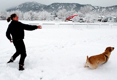 Spring Snow8.JPG Beth Cohen throws a dog toy to her dog Wiley on March 24th, 2010 at North Boulder Park. Cliff Grassmick / March 24, 2010