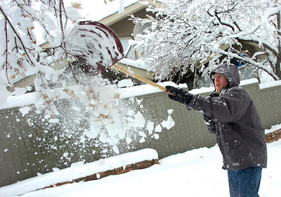Mark Meyer knocks snow off the limbs of trees in his yard in Boulder on Wednesday March 24. Meyer lost one large limb off a tree but prevented more damage by knocking snow off the trees yesterday during the storm. Photo by Paul Aiken / The Daily Camera