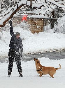 Spring Snow44.JPG Beth Cohen shakes a dog toy out of a tree as her dog Wiley waits in North Boulder Park on Wednesday March 24th, 2010. Cliff Grassmick / March 24, 2010