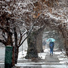 March 9th, 2013 Snow