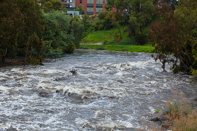 Strong water flow in the Yarra River with soaking rainfalls on 29 Jan 2021