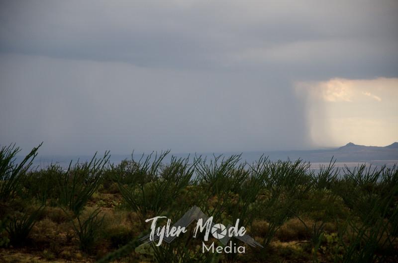 55   G Tucson Storm