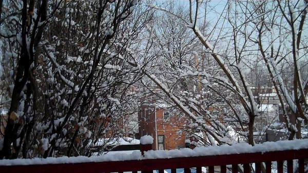 More Snow Videos