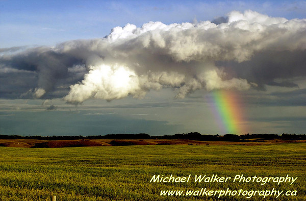 North of Regina, SA.  Another small storm cell with the most incredible rainbow.