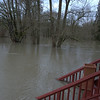 New Record Snoqualmie Flood - January 2009 :