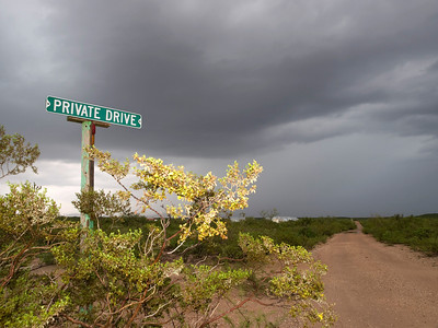 "A beautiful and photogenic place to visit during monsoon season. This shot saw me located east of Tucson in the Sierra Vista hills in search of monsoon storms. I was drawn to the colour from the yellow bush and sign, located in the middle of the desert landscape. The track or 'Private Drive' went on for ever straight into the storm. ""Sue me"" I thought.  Olympus E3, 12-60mm SWD - F5.6, 1/60s"