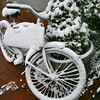 Manteo's barber shop bike.