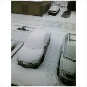 12 20 8 Car 120 PM