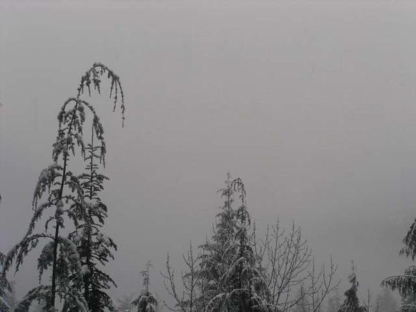 12 12 8 North Cascades