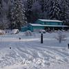 Vernonia Deep Snow