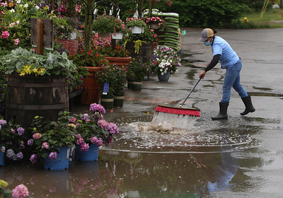 Isabel Rodriguez of Woburn, manager of McCues Flower Outlet, sweeps a puddle at the entrance down the drain after a heavy rain. SUN/Julia Malakie