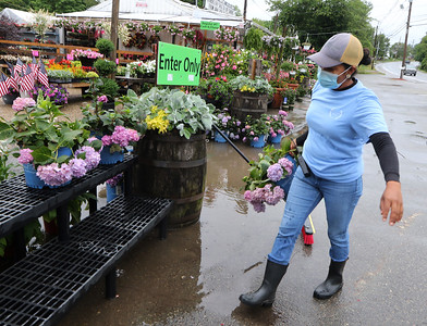 Isabel Rodriguez of Woburn, manager of McCues Flower Outlet, moves hydrangeas out of the way while sweeping a puddle at the entrance down the drain after a heavy rain. SUN/Julia Malakie