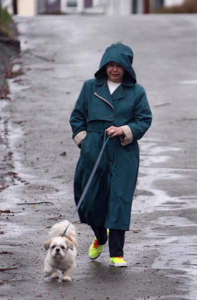 Rainy dog walk in Ayer 041516