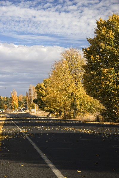 Sign of Autumn, On the way to Temora and Griffith, Australia