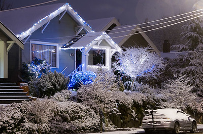 Seattle Snowstorm I 2008-09