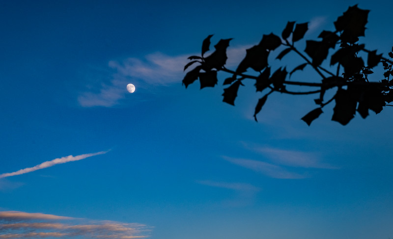Waxing moonrise (91%) over Mount Ephraim, NJ. December 19, 2018.