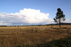 Looking ESE over the Meadowlark Prairie watching a storm brewing over Eugene, OR.