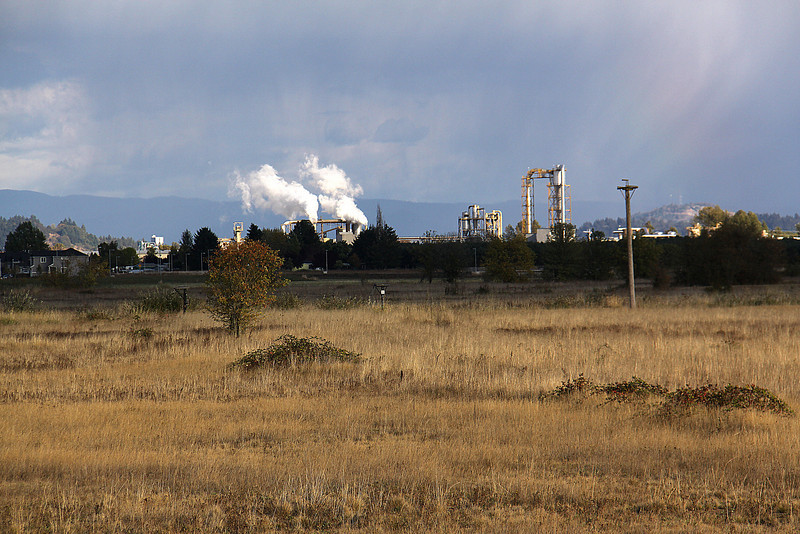 An industrial plant or power plant east of the Meadowlark Prairie.  The plumes of steam indicate the winds were from the SW.  Eugene, OR