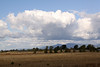 Storm clouds to the east of Meadowlark Prairie, Eugene, OR.