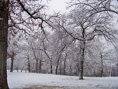 Snow Feb. 11-12 2010