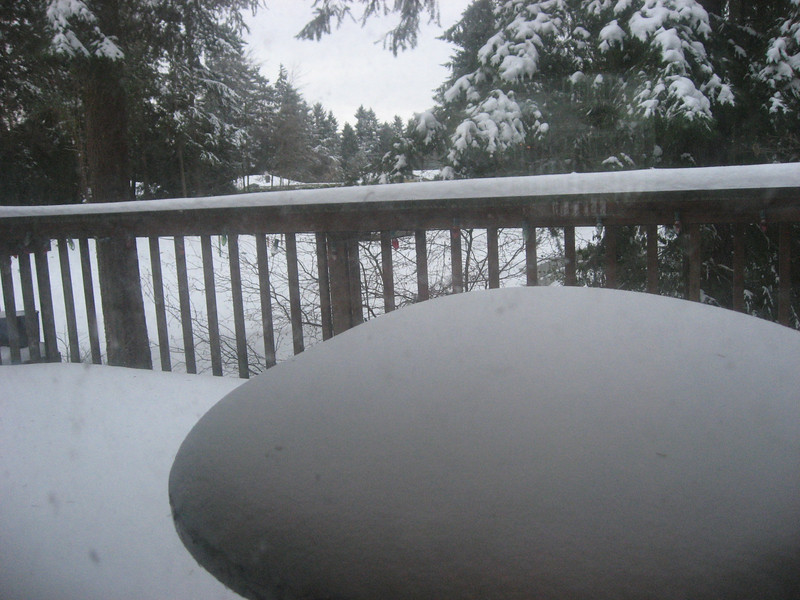 Snow on the back deck.