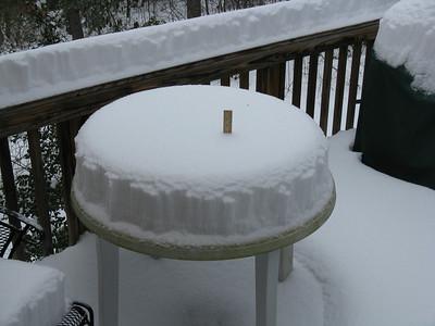 Snow 2010 Jan29
