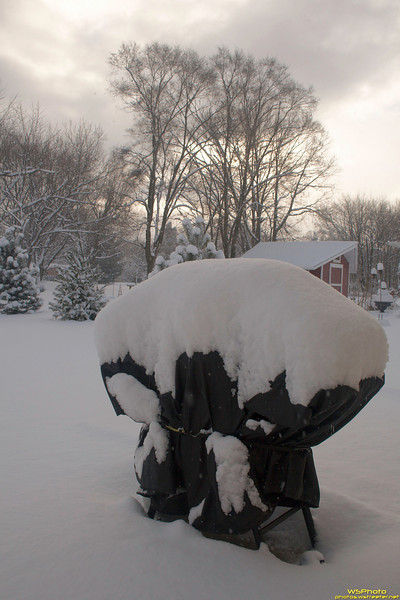 Memories of Summer<br /> Goshen Snow 1/8/2011