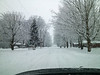 This was Homeacres in Goshen on my way home from church around 10:45 this morning (1/5/2014).