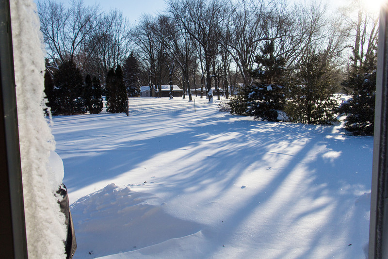 Drifting in the back yard after the blizzard