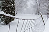 Old Snow Covered Fence in our back yard. The snow is between 8 & 12 inches deep in our back yard.