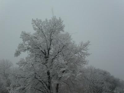 Snow And Fog, Leiden, 2007