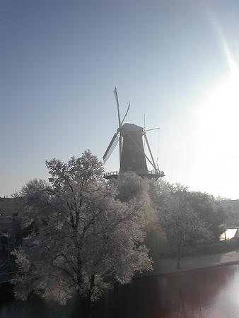 Snow And Sunshine, Leiden, 2007