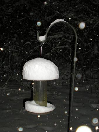 Snow Days January 9-14, 2011