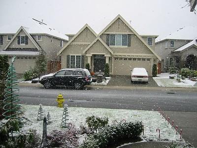 Snow - Dec. 2003