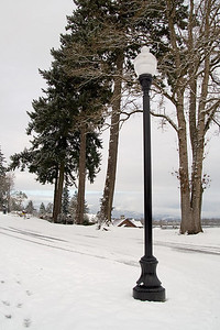 Snow and Streetlamp (107815599)
