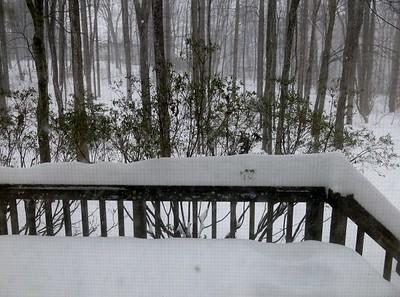 2016-01-23 Snowzilla! in Maryland