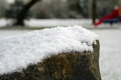 Snow (January 2007)