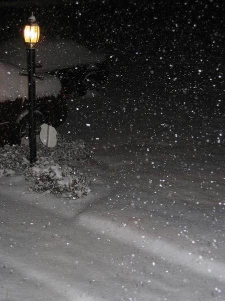 Snow! Leesburg, VA: January 25, 2004