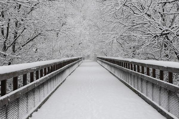 Snow Storm - 12-10-13
