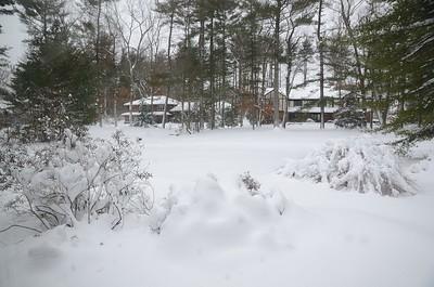 Snow Storm 2-9-17