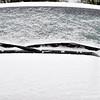 January 9, 2011<br /> <br /> SNOW............Finally!!!