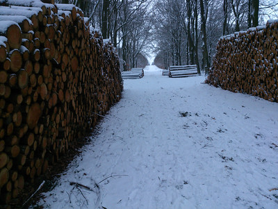 Snow in Dieren, February 2013