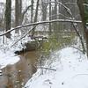 Chesapeake Arboretum