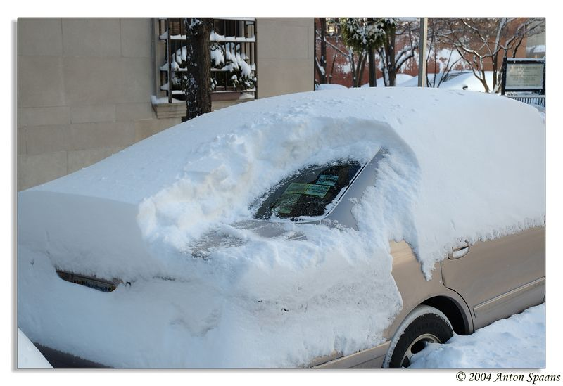 Christmas Snow Storm (2004)<br/> To avoid parking ticket: Clean rear window, showing permit.