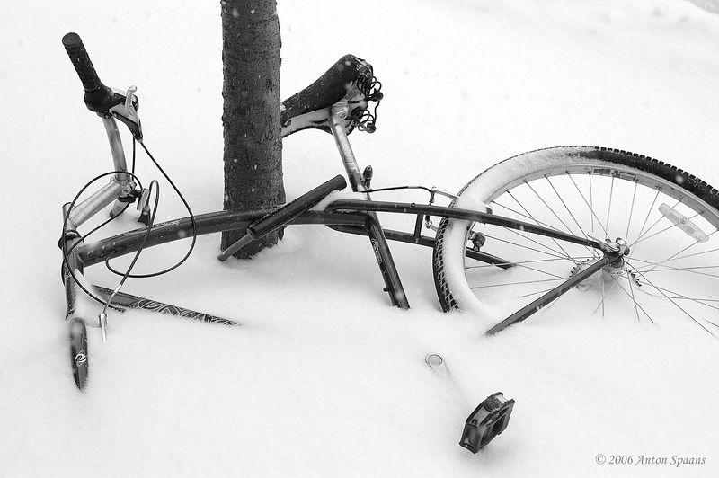 Fallen Bike