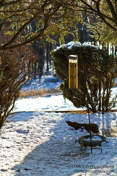 Bird feeder at Merrill Creek visitor's center