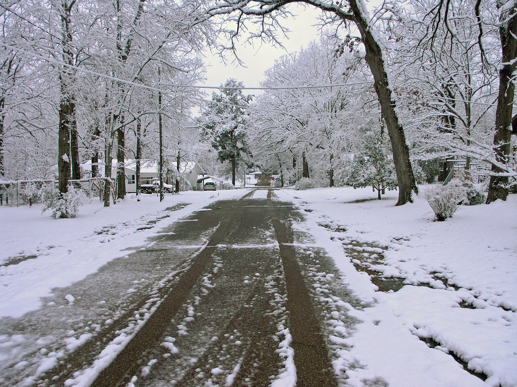 Feb 12.  Looking west down Cotton Street.  Our house is to the right.  See the old swing set between the trees?
