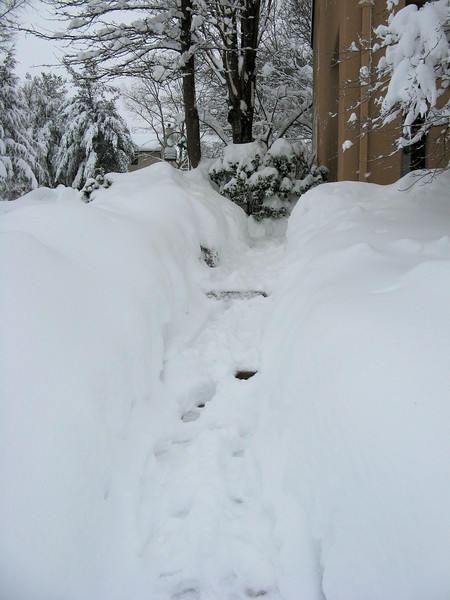 My front walk is shoveled- but it's still snowing, so it's filling up again.<br /> <br /> 2-6-10