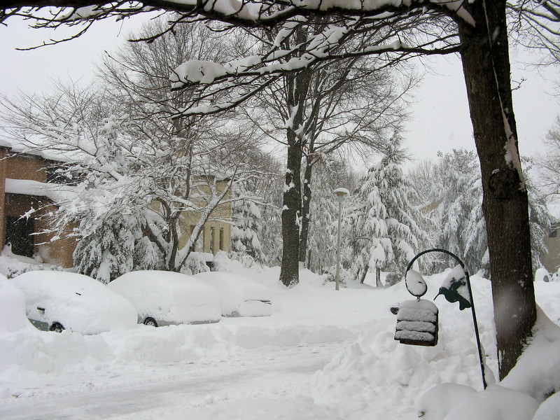Almost three feet of snow, and it hasn't stopped yet.<br /> <br /> 2-6-10