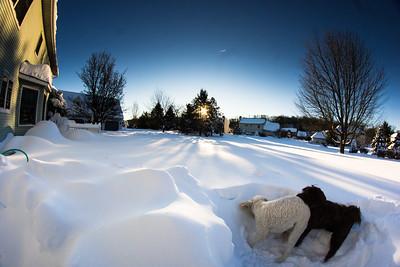 snowfall-03525